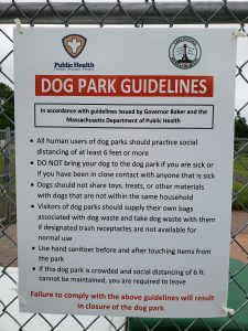 Dog Park Social Guidelines