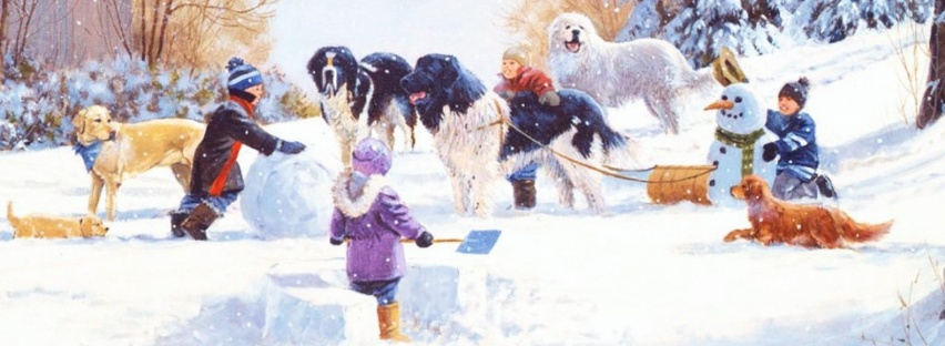2020/2021 Winter Dog Photo Contest