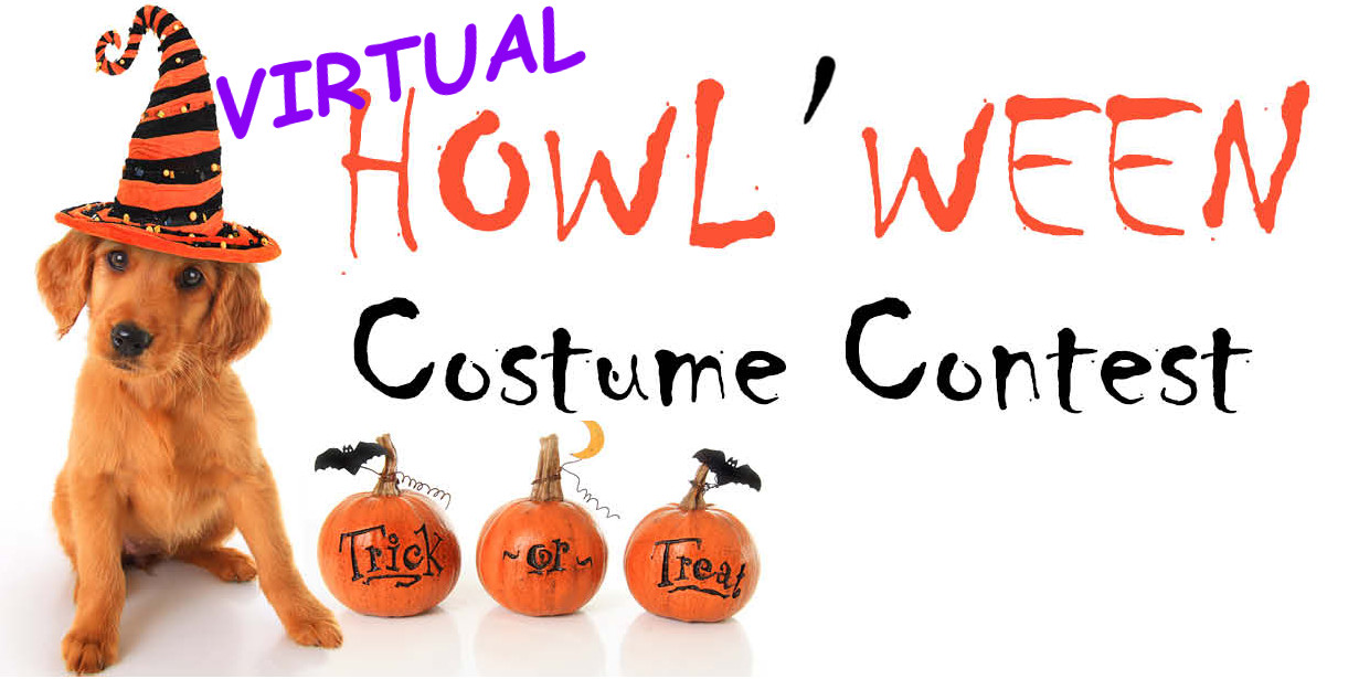 Virtual Howlween Costume Contest
