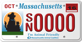 Massachusetts Animal Coalition License Plate Program