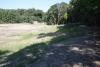 IMG_0080 Chelmsford Dog Park 8-25-2014