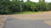 IMG_1016 Chelmsford Dog Park 2015-07-23