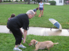 Dog Obedience Class – Session 1 recap