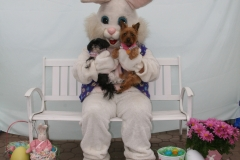 Easter Bunny - 2018